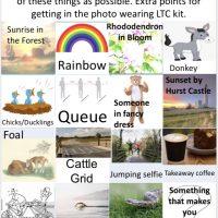 LTC Treasure Hunt May 2020, Winning Entries from Neil